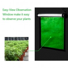 LY-120*120*200cm Home Use Dismountable Hydroponic Plant Growing Tent with Window Green & Black
